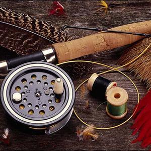 Охотничьи и рыболовные магазины Кошек