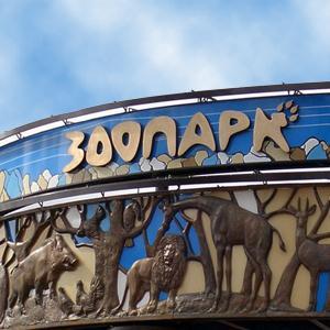 Зоопарки Кошек
